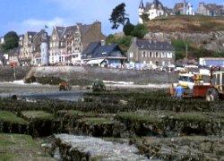 Les parcs d'huîtres se découvrent à marée basse à CANCALE