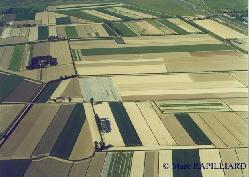 les polders en baie du Mont-Saint-Michel